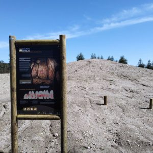 Dólmen de Antelas seleccionado para integrar evento que assinalará o Dia Europeu da Cultura Megalítica